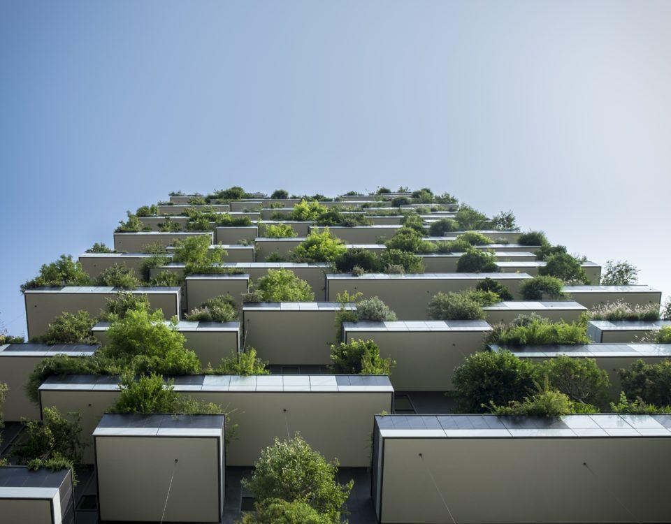real-estate-agent-downers-grove-il-condos