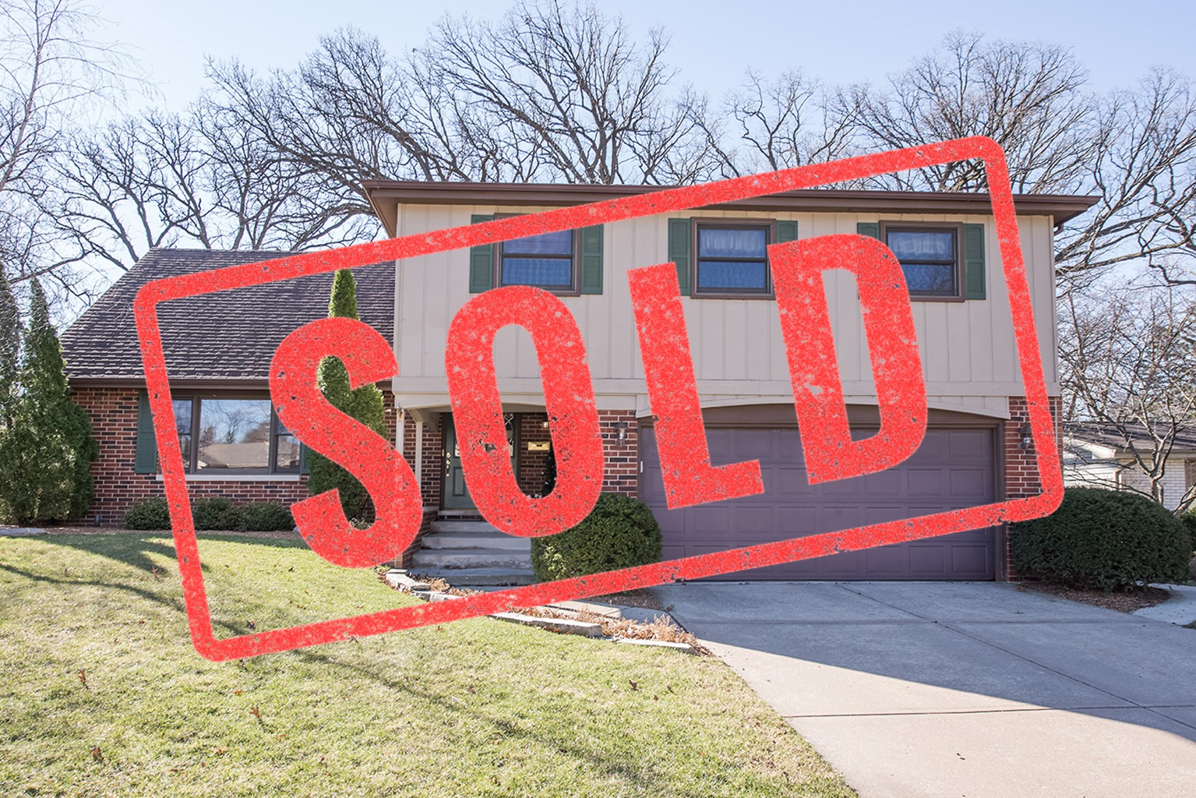 1113 Black Oak Downers Grove il realtor sold
