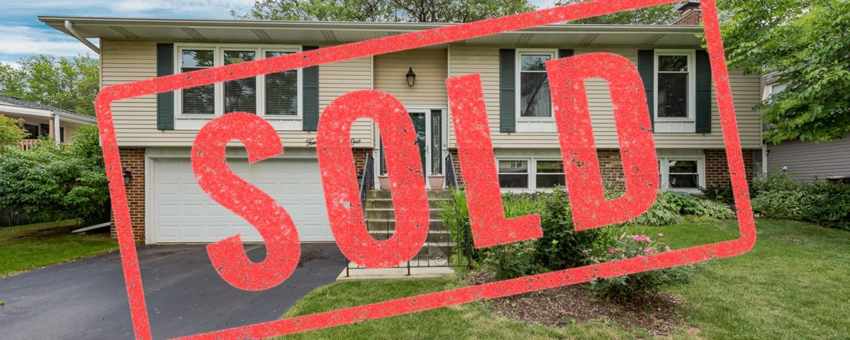 1461 Brunette Dr Downers Grove IL real estate agent.JPEG